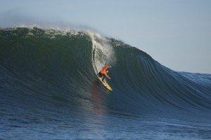tyler-fox-667x444_Surfing magazine